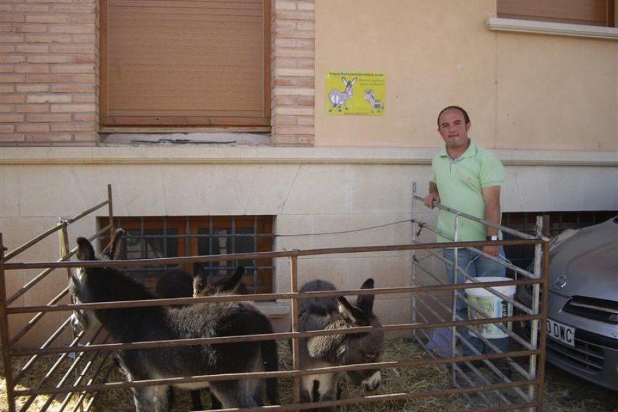 Feria Mora de Rubielos 2009