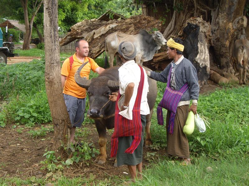 alejadro y los birmanos