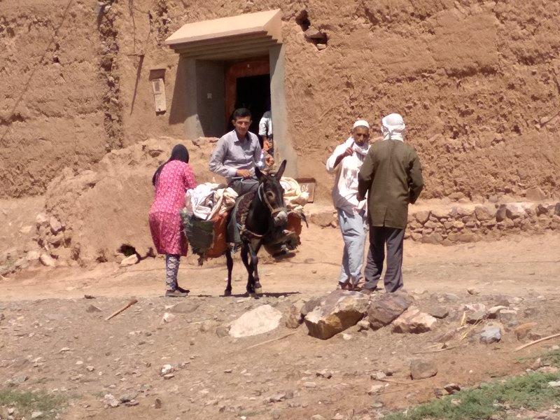 Burro Montado